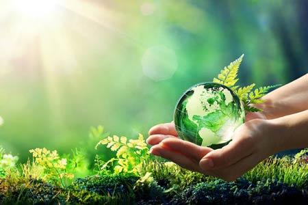 ESG e sustentabilidade empresarial são fundamentais para o futuro