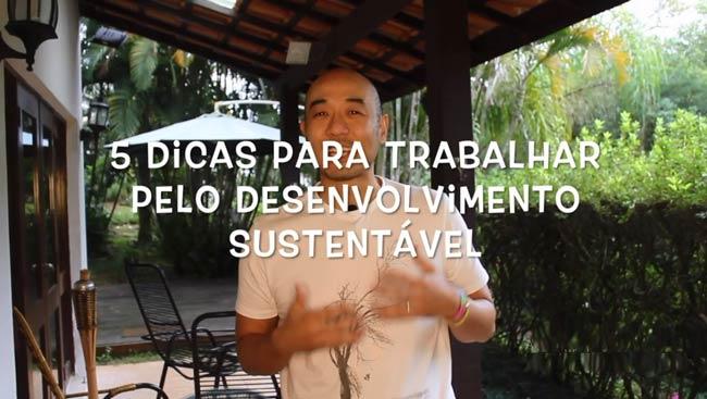 5 dicas para trabalhar pela sustentabilidade