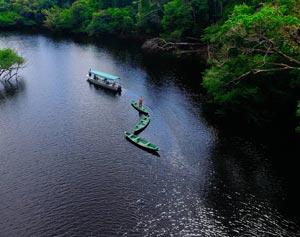 Dia da Amazônia – a Amazônia importa